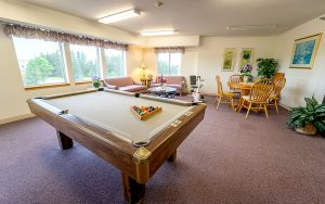 Northview Senior Apartments Amenities and game room